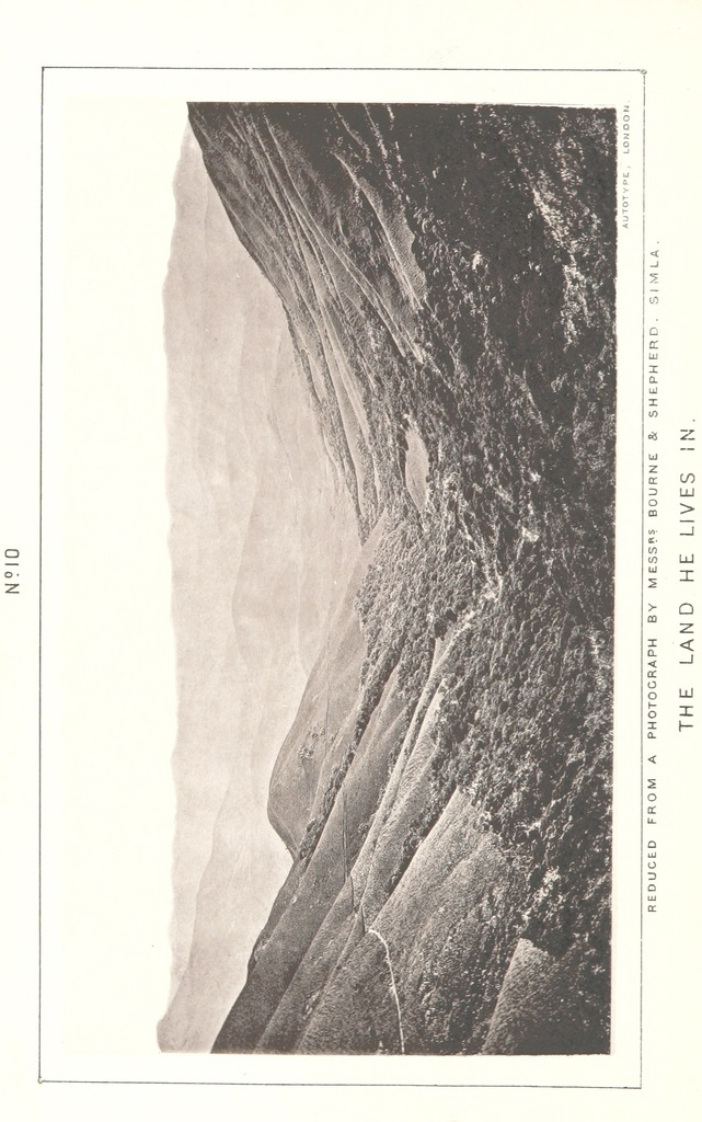 """mountains from """"A Phrenologist amongst the Todas; or the study of a primitive tribe in South India history, character, customs, religion, infanticide, polyandry, language ... illustrations by the autotype process"""""""