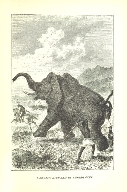 """elephant from """"Africa: the history of exploration and adventure, as given in the leading authorities from Herodotus to Livingstone. ... With ... illustrations"""""""