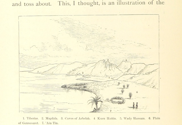"""coastline from """"The Lord's Land: a narrative of travels in Sinai ... and Palestine, etc"""""""