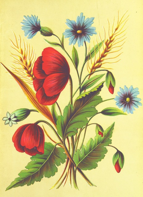 """flora from """"The Keble Autograph Birthday Book. [Containing selections from J. K.'s poetry.] With floral illustrations. By E. L. M"""""""