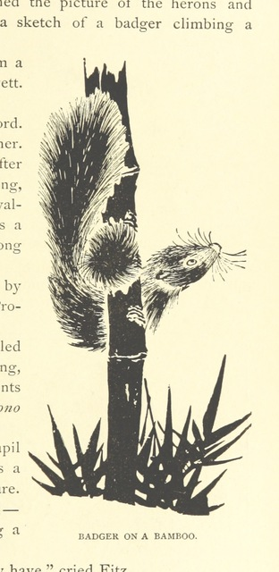 """Rodent from """"Young Americans in Japan; or, the adventures of the Jewett Family and their friend Oto Nambo ... Illustrations, etc"""""""