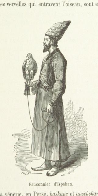 """falcon from """"La Perse. Géographie, histoire, mœurs, gouvernement. Orné de ... gravures"""""""
