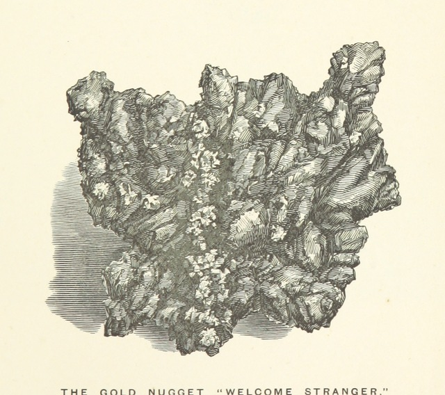"""largest alluvial gold nugget found from """"Illustrated Handbook of Victoria, Australia. [Edited by James Thomson.]"""""""