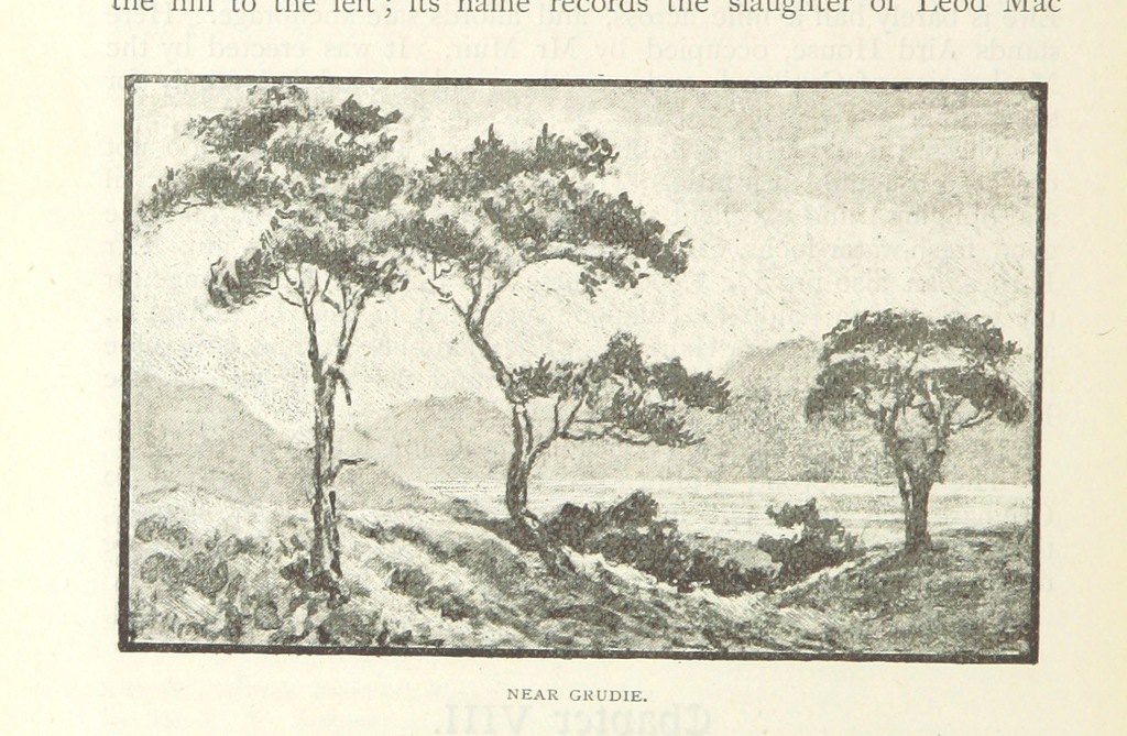 """tree from """"Gairloch, in North-West Ross-shire, its records, traditions, inhabitants, and natural history, with a guide to Gairloch and Loch Maree, and a map and illustrations, etc"""""""