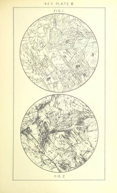 """circle from """"British Petrography: with special reference to the igneous rocks. With ... plates. (Glossary of terms used in describing Rocks By F. H. Hatch.)"""""""