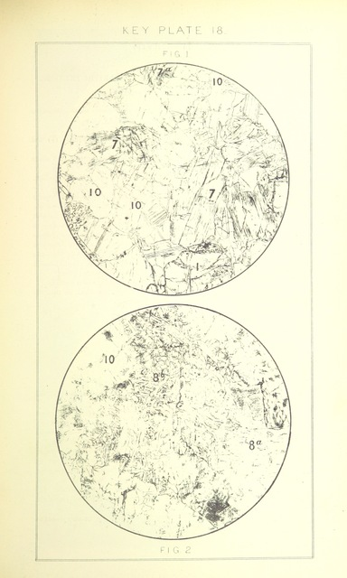 """map from """"British Petrography: with special reference to the igneous rocks. With ... plates. (Glossary of terms used in describing Rocks By F. H. Hatch.)"""""""