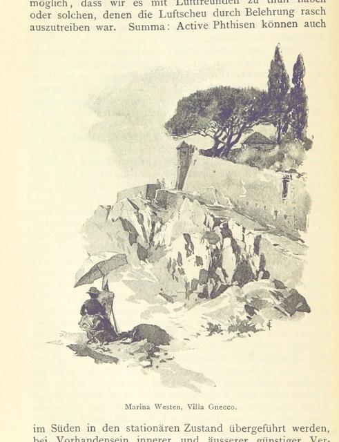 """Liguria from """"Nervi und seine Umgebungen. Ein Handbuch für Gesunde und Kranke ... Der botanische Theil (Einblick in die Vegetation von Nervi) von V. Fayod, etc"""""""