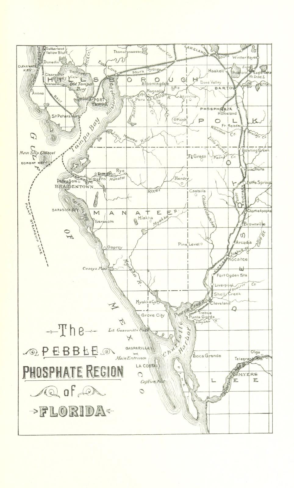 "pebble phosphate region from ""Florida, South Carolina and Canadian Phosphates, etc"""