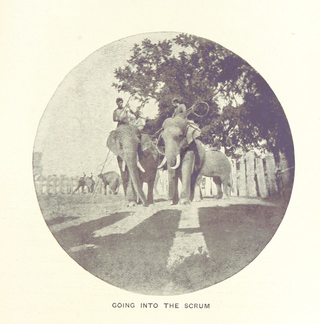 """scrum from """"Five Years in Siam from 1891 to 1896 ... With maps and illustrations by the author"""""""