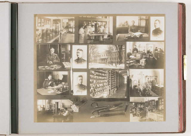 Compositie van 14 foto's en gedroogde takken en medische instrumenten en voorwerpen