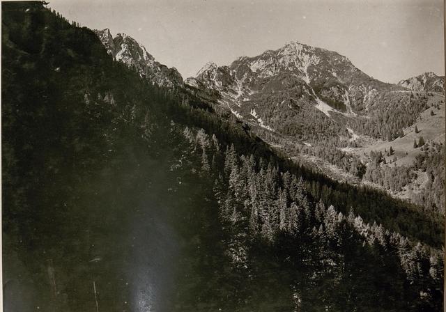 Blick vom Art.-Beobachter am Schiebriegel gegen den Gregnedulhang-Lusnitzer Alm. (22/8.1917.)
