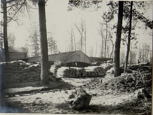 Das für Stallungsbau erzeugte Bretter und Pfostenmaterial wird mittels Feldbahn in die Stellung geführt, aufgenommen im März 1916