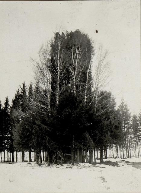 Fliegerbeobachtungsstand beim XIII. Korpskommando in BUCZACZ.