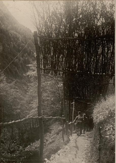Maskierter Weg zum Kompagnie Kommando des Lst.Inf.Rgts.Nr.26. Standpunkt: KAPELLENTAL, GOLUBAR PLANINA. aufgenommen 28.VI.16.