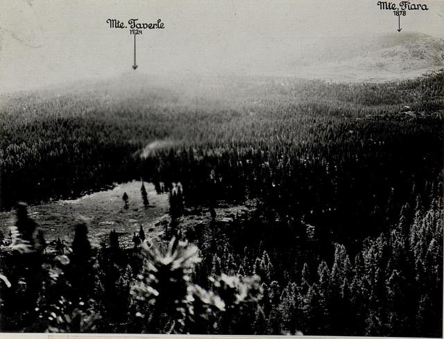 Panorama: J.Ghernari di Bosco secco (False Roccolo.)  (4. Teilbild zu WK1_ALB082_24358a)