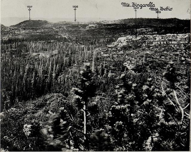 Panorama: J.Ghernari di Bosco secco (False Roccolo.)  (6. Teilbild zu WK1_ALB082_24358a)