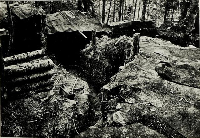 Pass Toronya - Wyszkow; Eig.Schützengrb. im Walde.