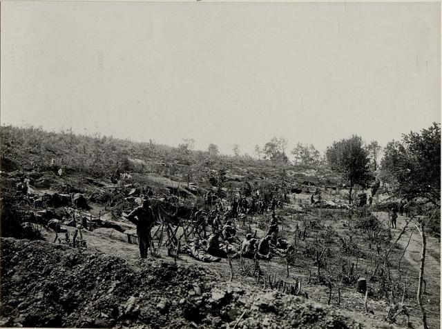 Reservestellungen im Pionierwäldchen, welche beim Angriff am 1. Juli auf die Worobijowka-Höhe durch das erste Bataillon des Infanterieregimentes 86 besetzt war