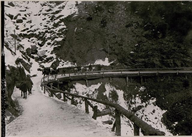 Straße zur Straniger Alm.