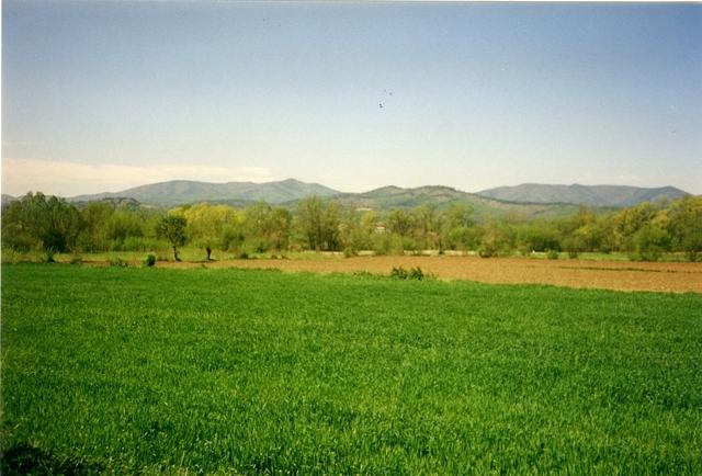 Utrikestjänst, FN. Camp Oden i Tuzla. Vackert, men förrädisk grönska!