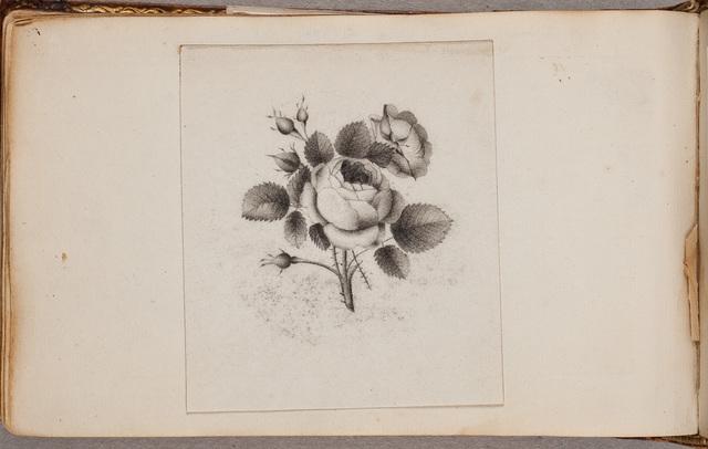 Albumbijdrage / door N.N., voor Johanna Paulina Jacoba van Toulon (1794-1884)