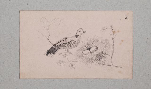 Albuminscriptie / van D. Hollestelle, voor N.N. [Anna Maria Gerarda Wilhelmina de Jonge?]