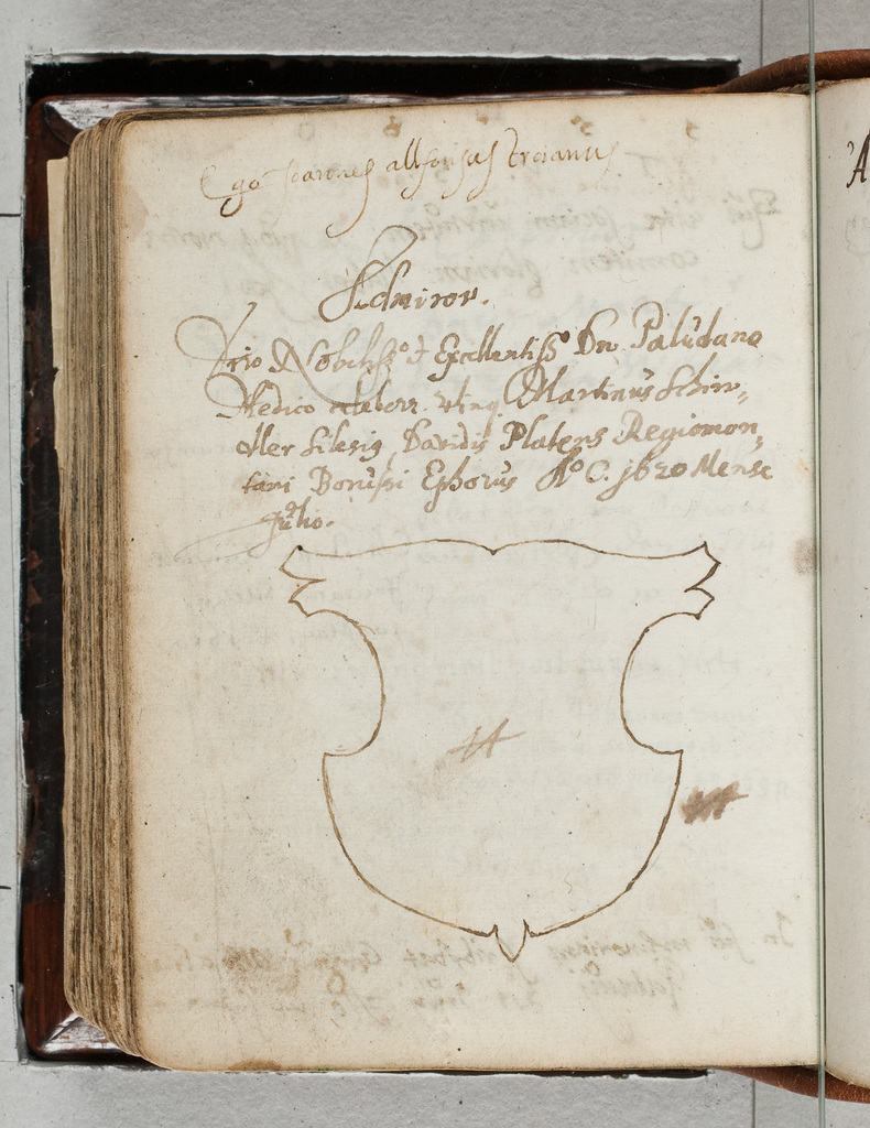 Albuminscriptie / van Joannes Allfonsus Troianus, voor Bernardus Paludanus (1550-1633)