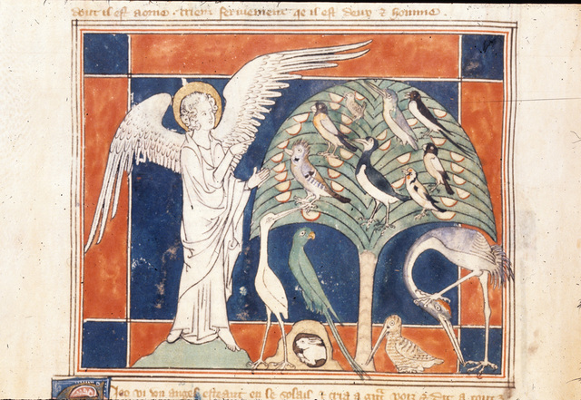 Angel, birds and a rabbit from BL Royal 19 B XV, f. 37v