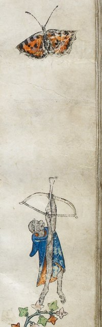 Ape archer from BL Royal 14 E III, f. 89