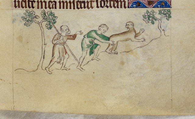 Ape from BL Royal 2 B VII, f. 107