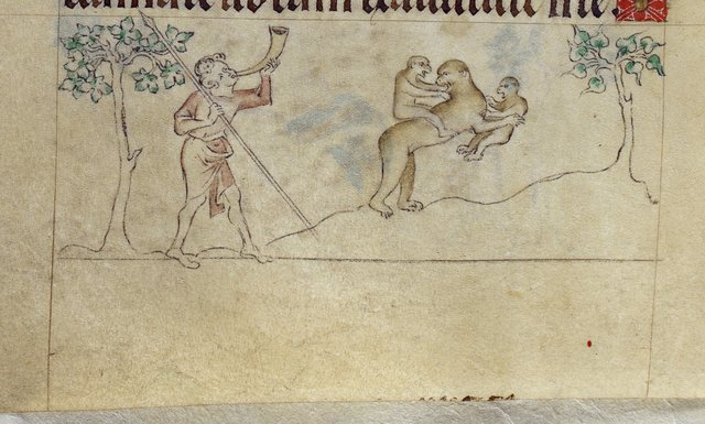 Apes from BL Royal 2 B VII, f. 107v