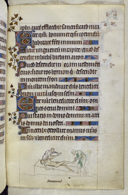 Bartholemew from BL Royal 2 B VII, f. 264