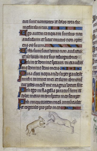 Bear and horse from BL Royal 2 B VII, f. 130v