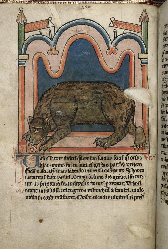 Bear from BL Harley 4751, f. 15v