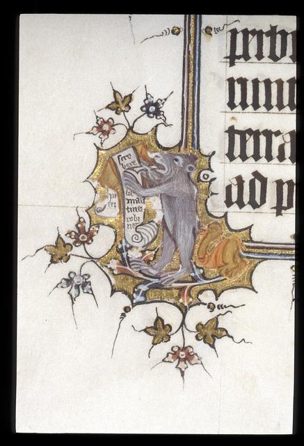 Bear writing from BL Eg 3277, f. 13v