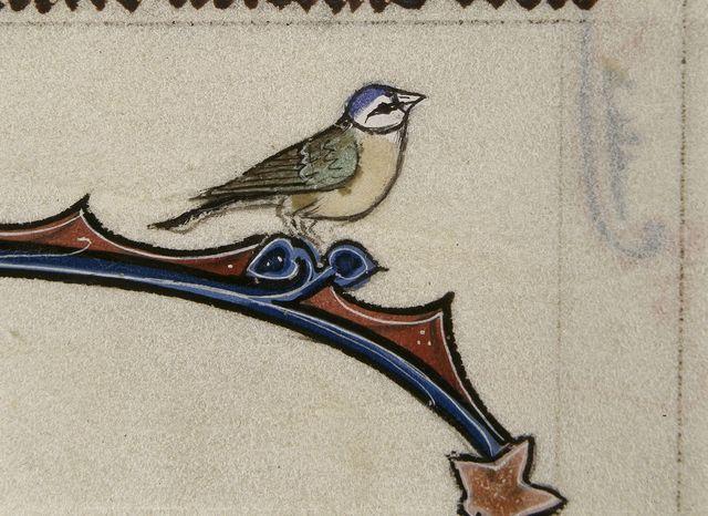 Bird from BL Royal 3 D VI, f. 116