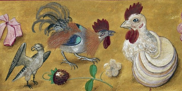 Bird of prey and chickens from BL Royal 19 C VIII, f. 32v