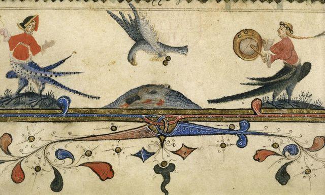 Bird of prey from BL Harley 7026, f. 16