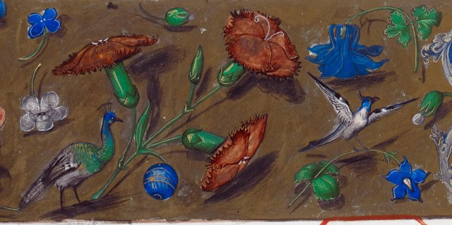 Birds from BL Royal 15 E III, f. 11