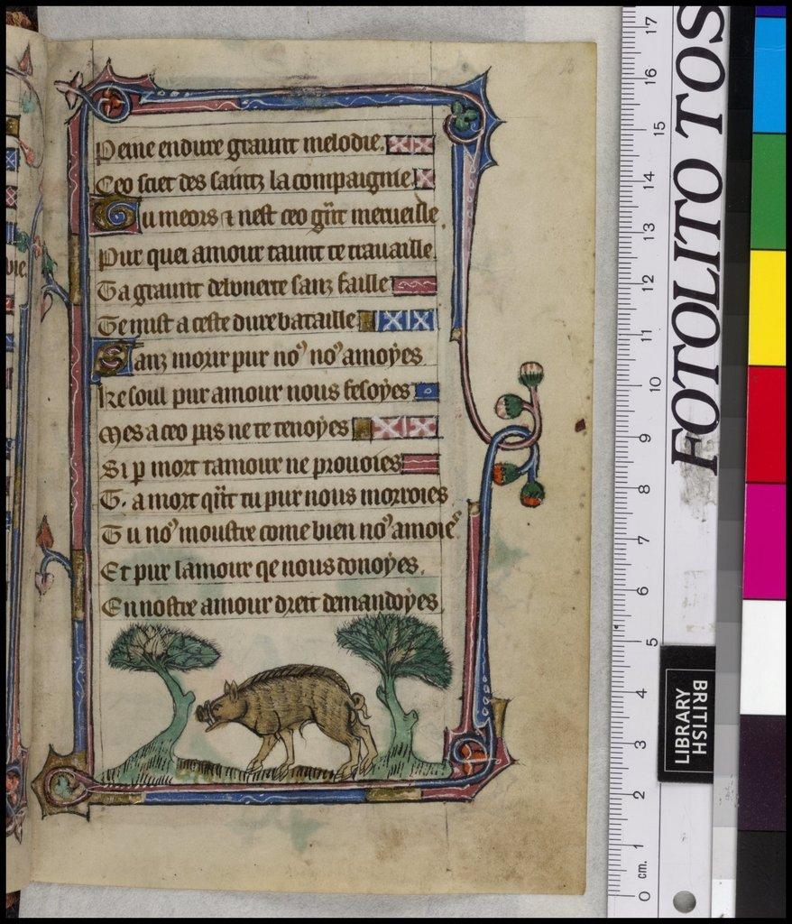 Boar from BL YT 13, f. 15