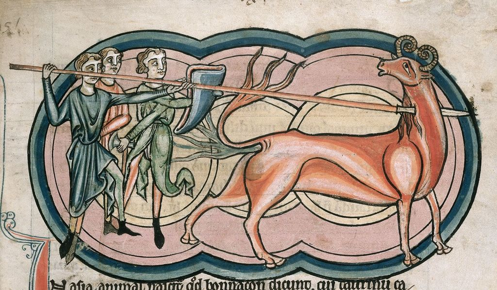 Bonnacon from BL Harley 4751, f. 11