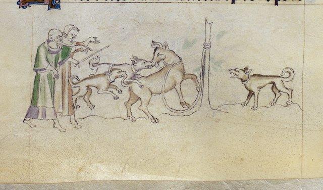 Bull baiting from BL Royal 2 B VII, f. 144v