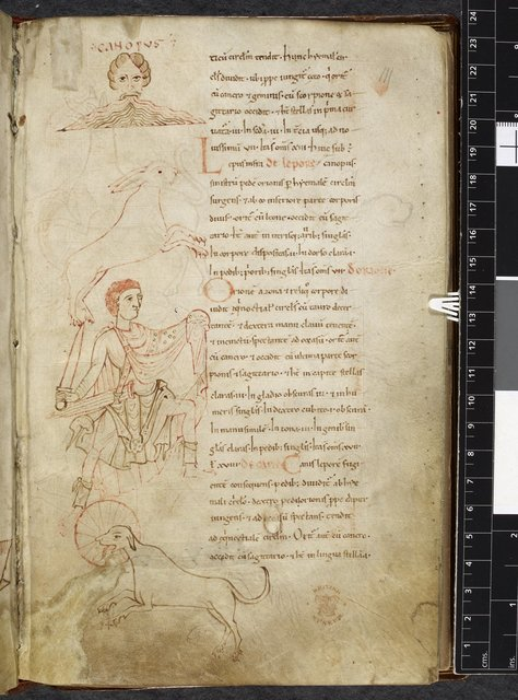 Canopus, Lepus, Orion, and Canis from BL Royal 13 A XI, f. 111