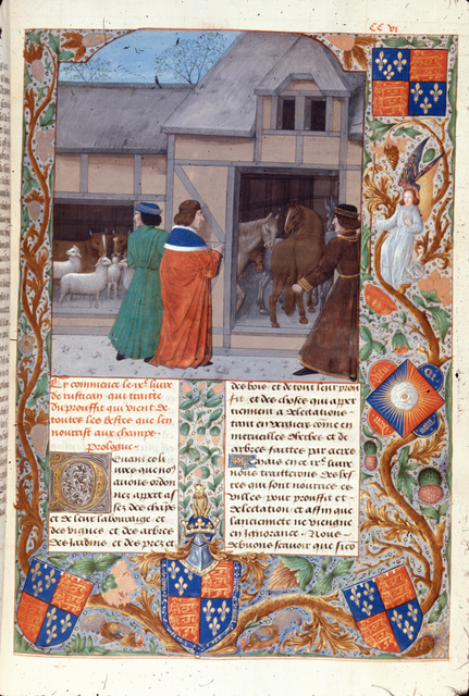 Cattle and horses from BL Royal 14 E VI, f. 215