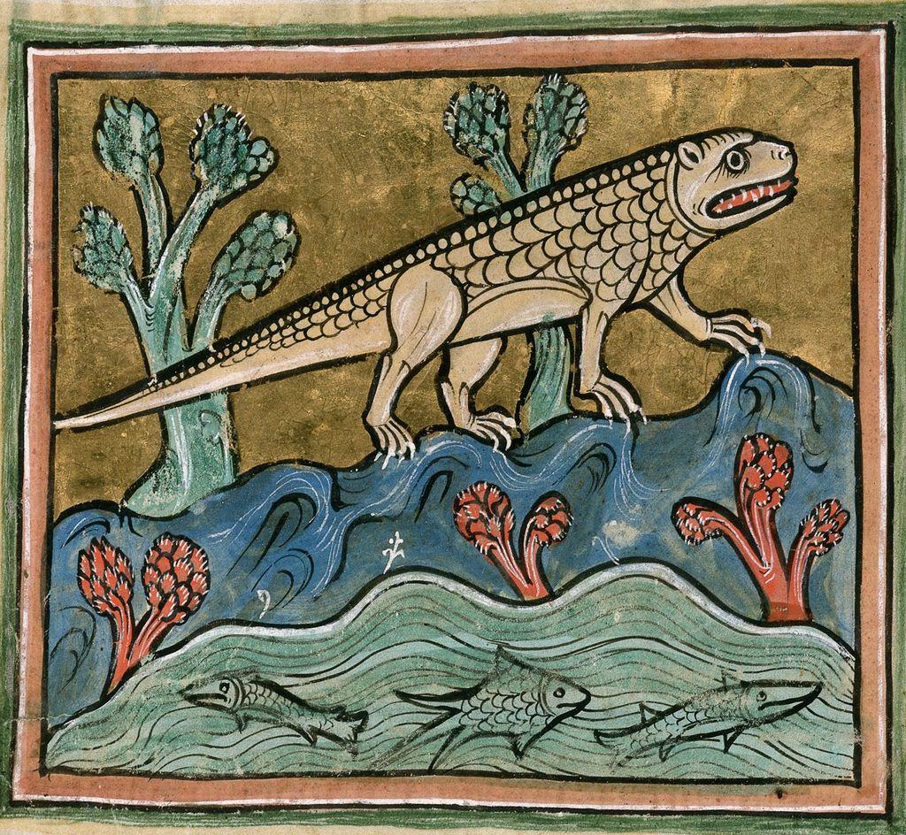 Crocodile from BL Royal 12 F XIII, f. 24
