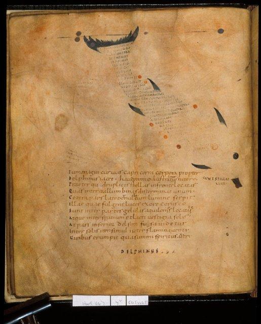 Delphinus from BL Harley 647, f. 7v