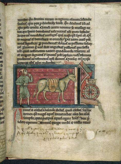 Donkey from BL Harley 4751, f. 25