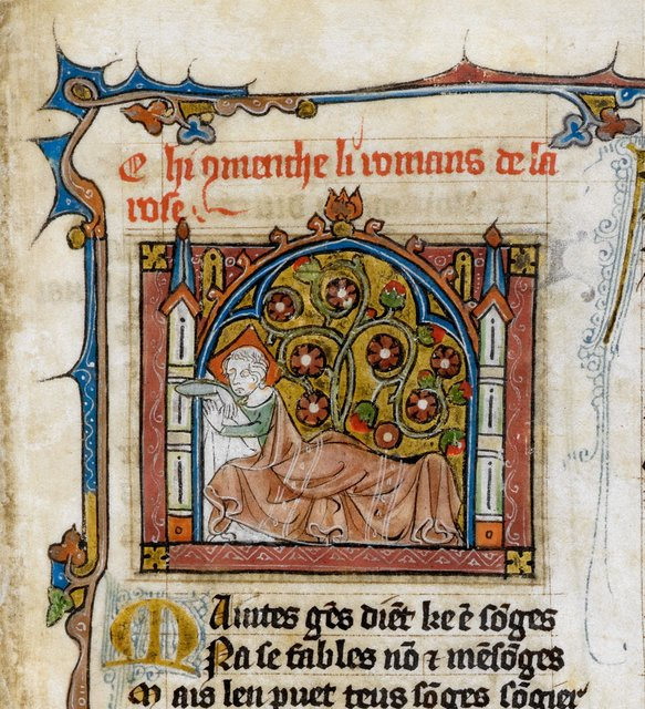 Dream of the Lover from BL Royal 20 A XVII, f. 2