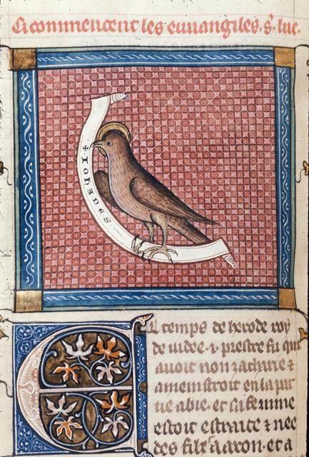 Eagle from BL Royal 18 D VIII, f. 57v