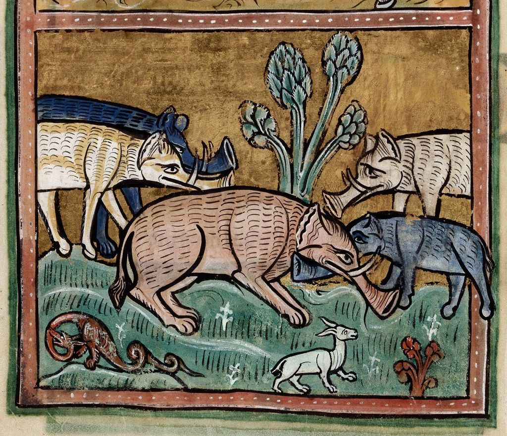 Elephants from BL Royal 12 F XIII, f. 11v